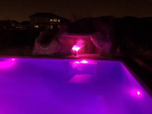 purple swimming pool lights