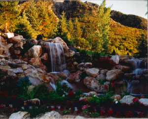Residential backyard waterfall with flowers