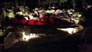 lights illuminating the landscaping