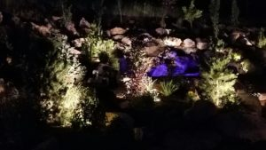 Lighting up the landscaping